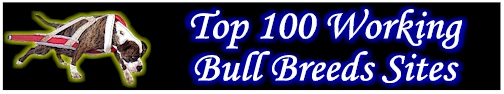 Top 100 Working Bull Breeds Sites